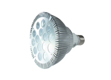 PAR 38 LED Lamp - Eco Light Up