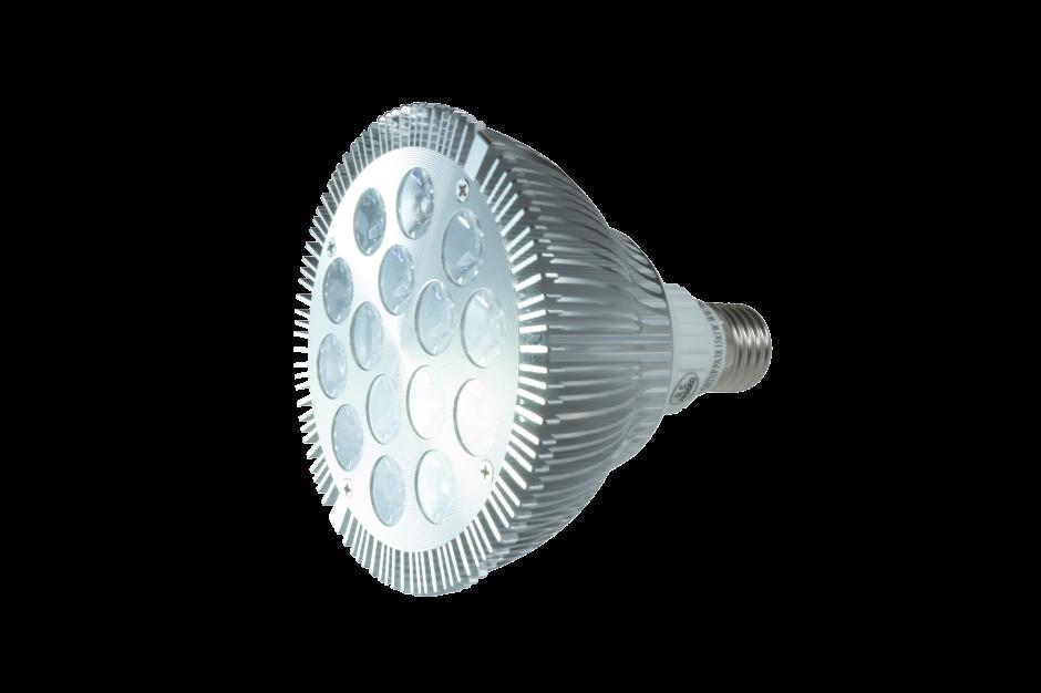PAR 38 LED Lamp